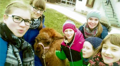Reiterinnen mit Alpaka